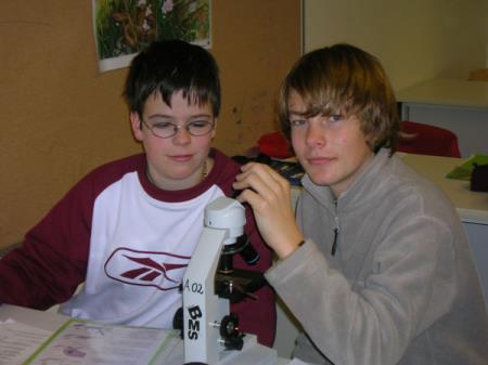 mikroskopie05.jpg